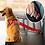 Thumbnail: חגורת בטיחות לכלבים