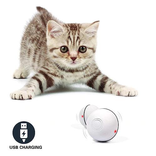 משחק כדור אינטרקטיבי לחתולים