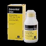 Amoxidal Duo Susp.png