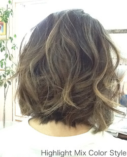 Bob&ハイライトFashion Hair
