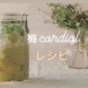 梅コーディアルの作り方