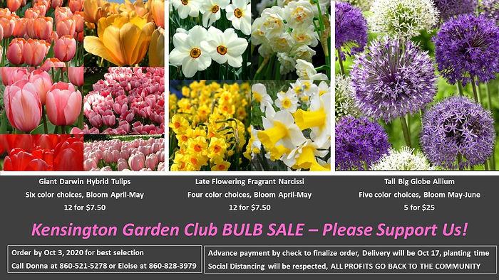 Bulb Flyer.jpg