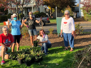 Fall Cleanup at Volunteer Park