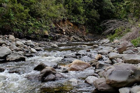 Coro Land and Water 2.jpg