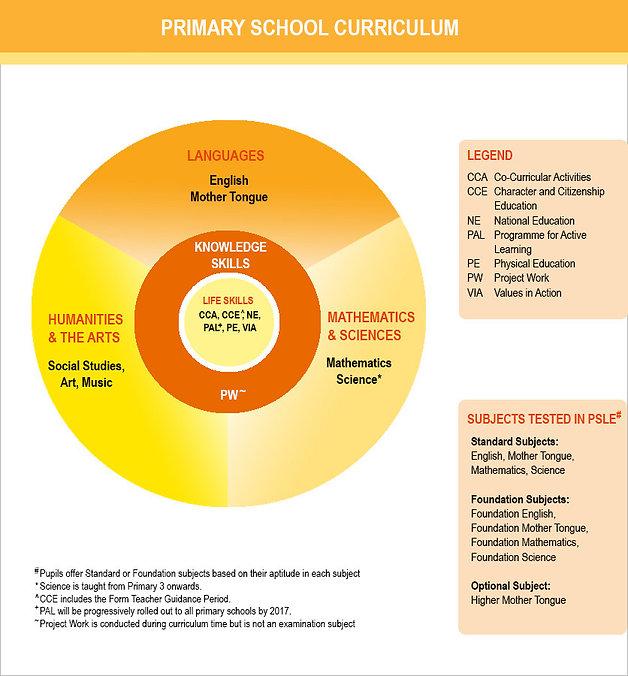 primarysch-curriculum-diagram_large.jpg
