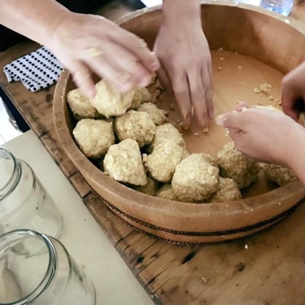 Sweet chickpea miso & herb shio koji making