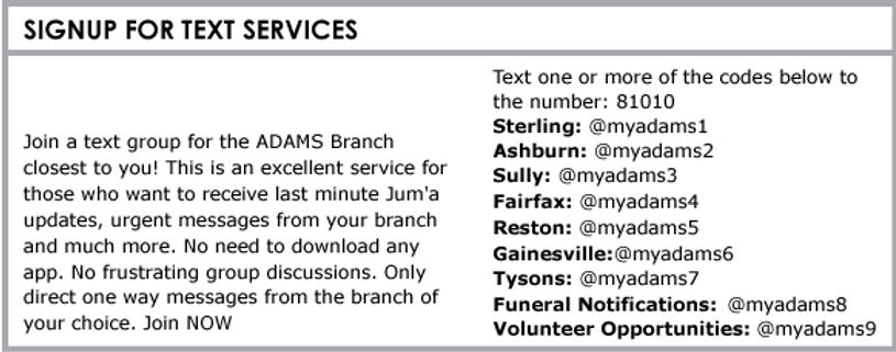 TextServices2.jpg