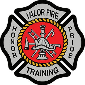 VFT Logo.png