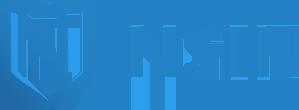 NSIN Logo.webp