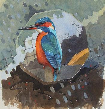 kingfisher yarls 2 w.jpg