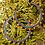 Thumbnail: Firey Petal Round Hoops