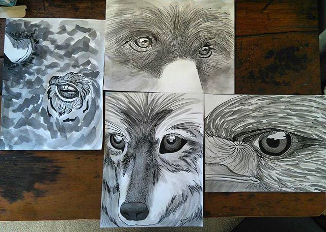 Medicine Of The Four #eagle #wolf ##buffalo #bear #4directions #4sacredanimals #4medicines #native #