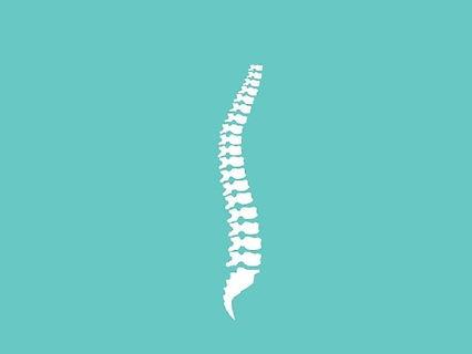 spineS_edited.jpg