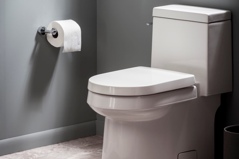929324540-gerber-wickerparkonepiececoncealedtrapway-toilets-hero-tcm96-2195562