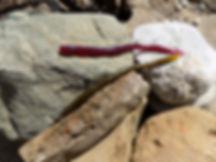 Trick shake worms assorted.JPG