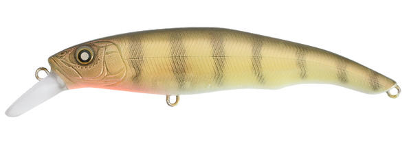 08_YellowPerch - Erie 95 SD.png
