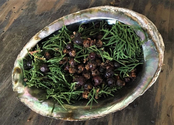 Organic Juniper Berries for Purification, Smudging, Meditation