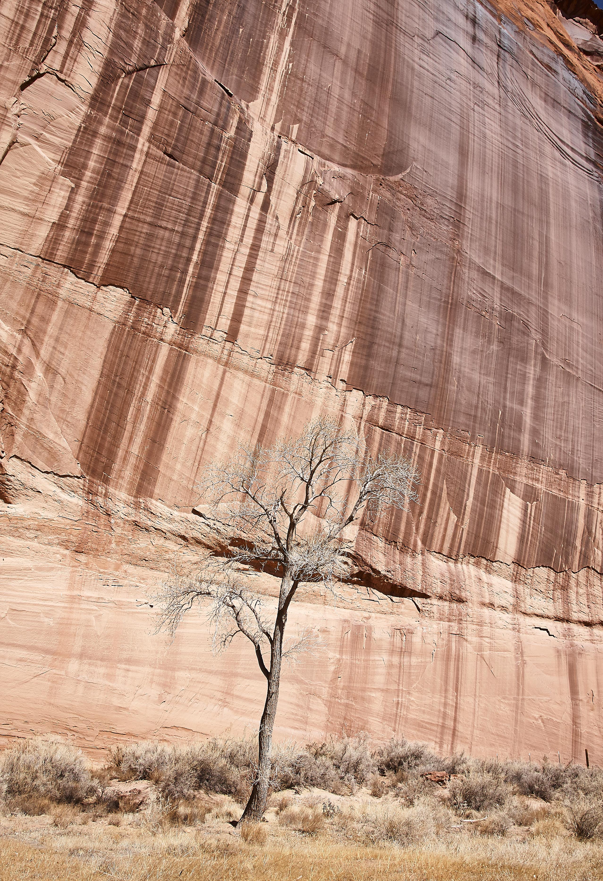 Canyon de Chelly - 30