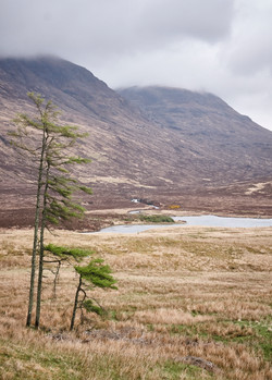 Isle of Skye - 01