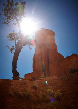 Bryce Canyon_267