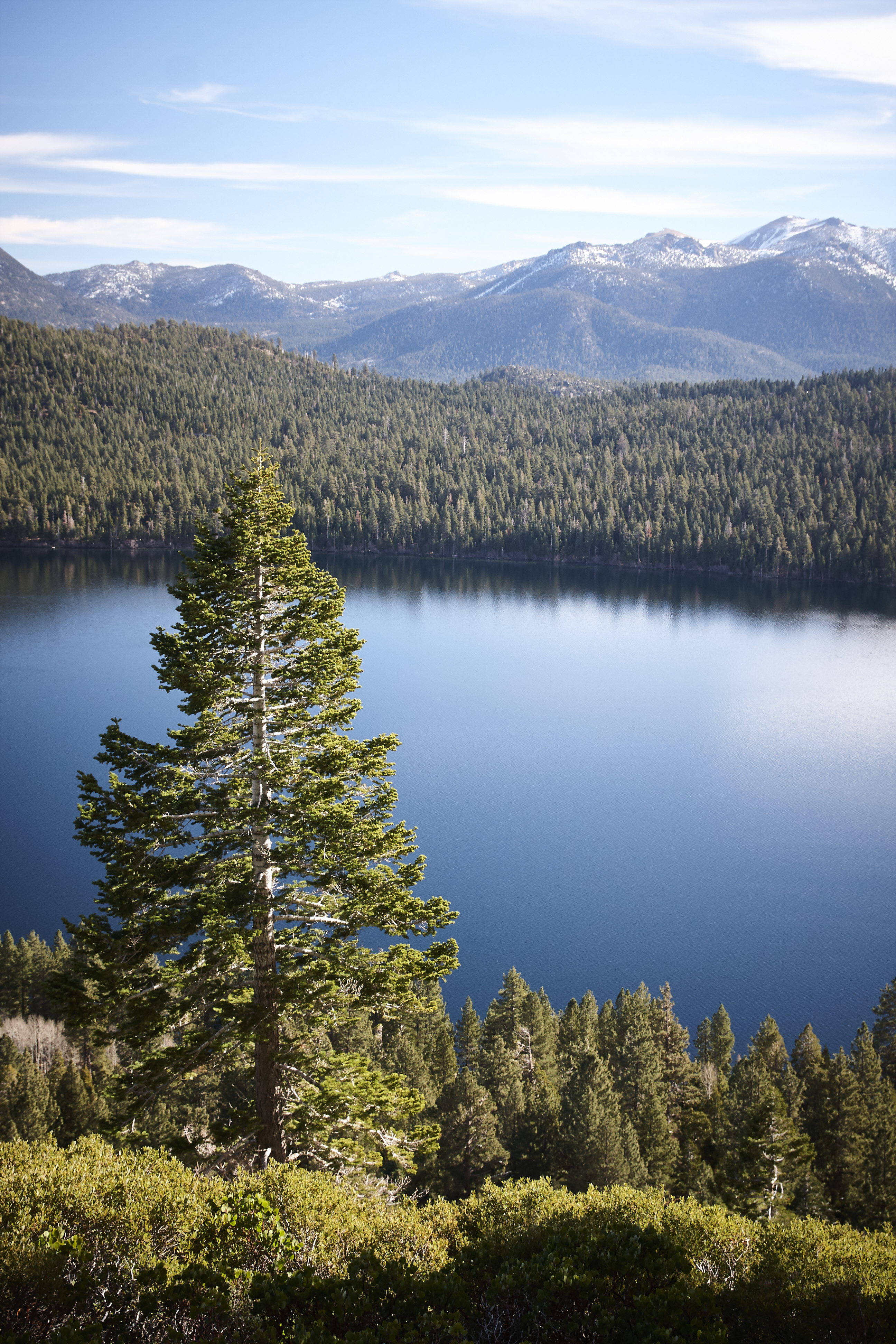 Lake Tahoe 2017 - 50