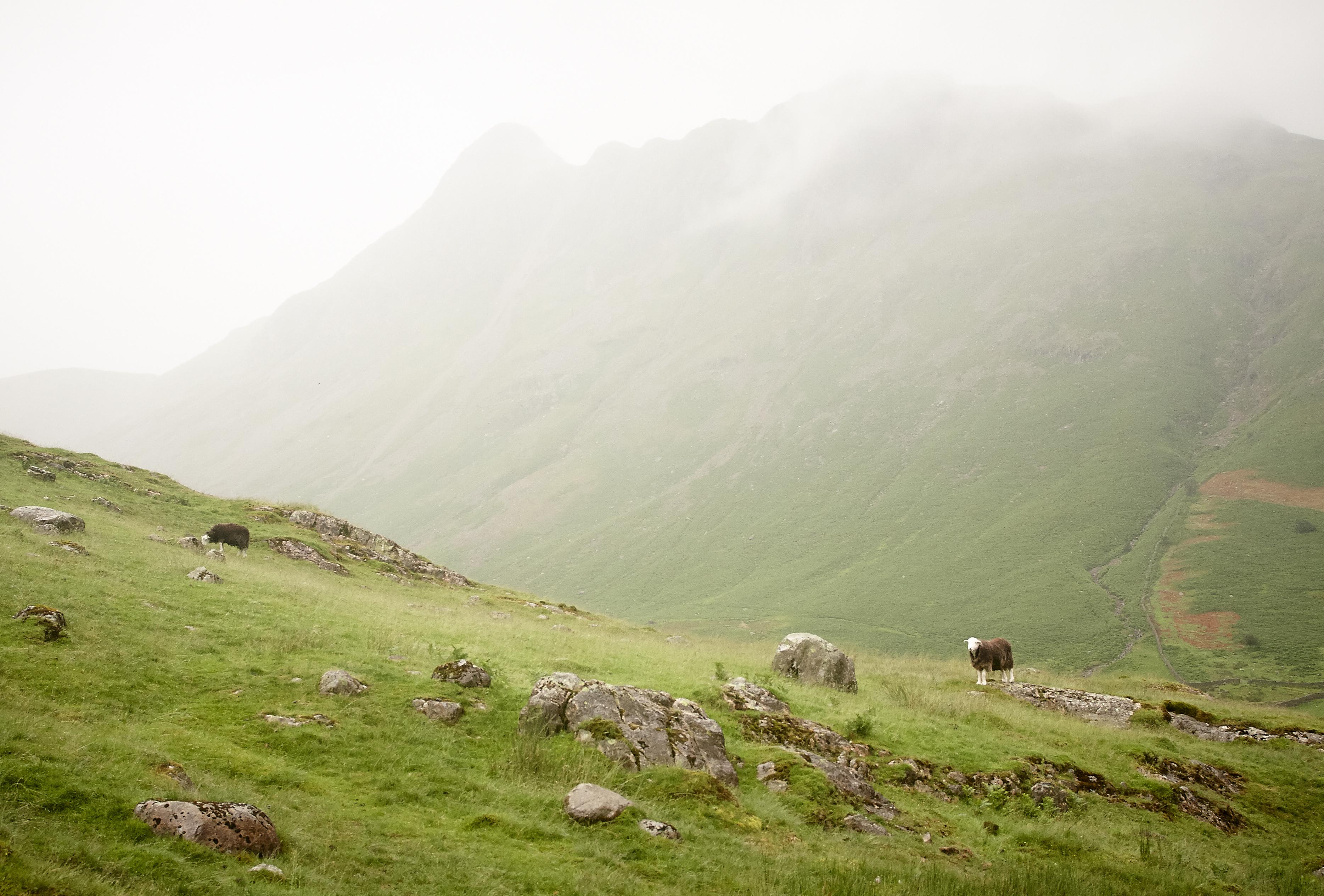 Lake District, The Band - 003
