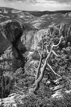 Yosemite_072