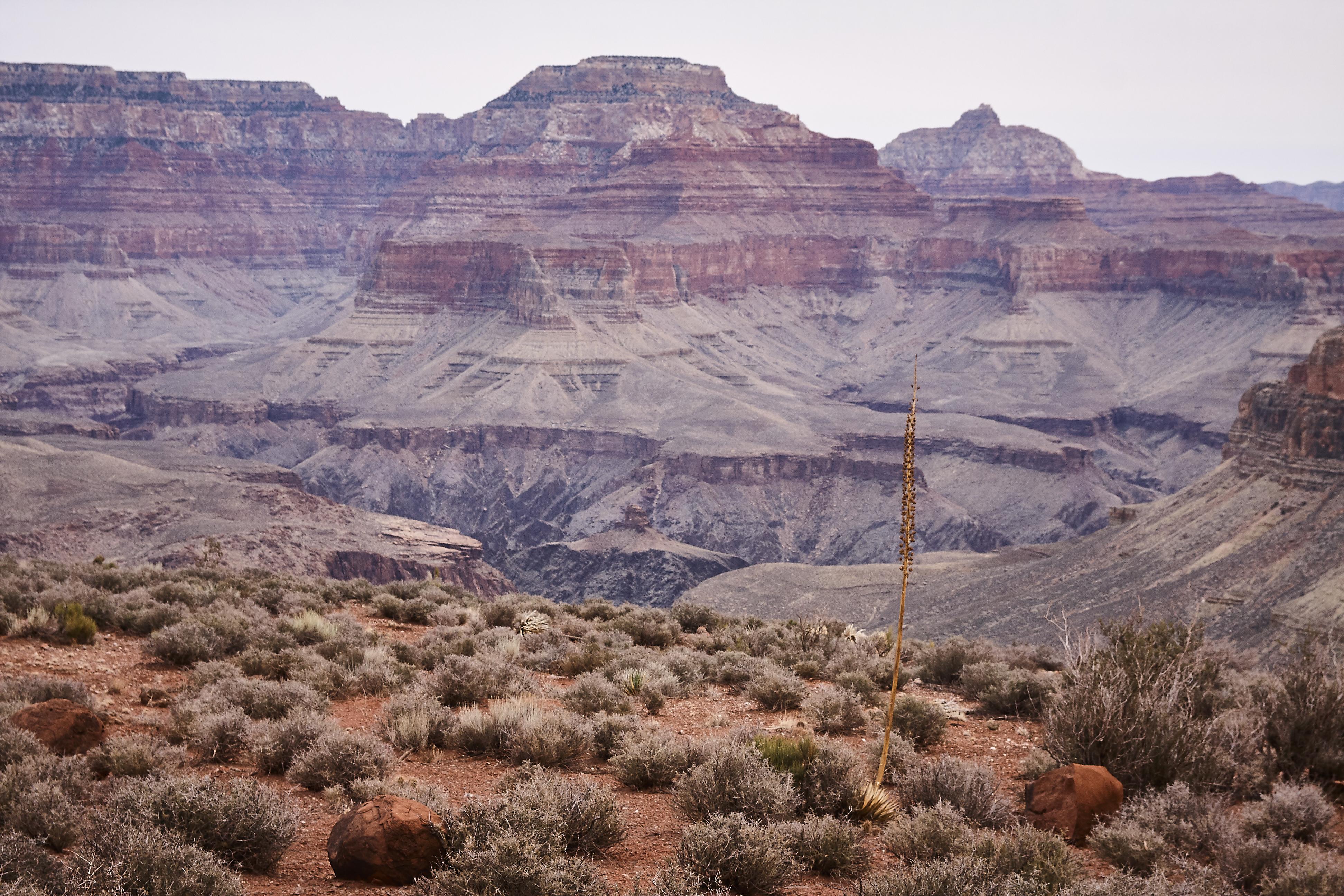 Grand Canyon - 52