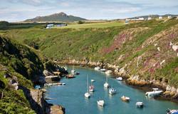 Pembrokeshire - 097