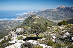Mallorca, Day 4 - 153