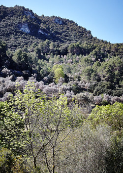 Mallorca, Day 3 - 061