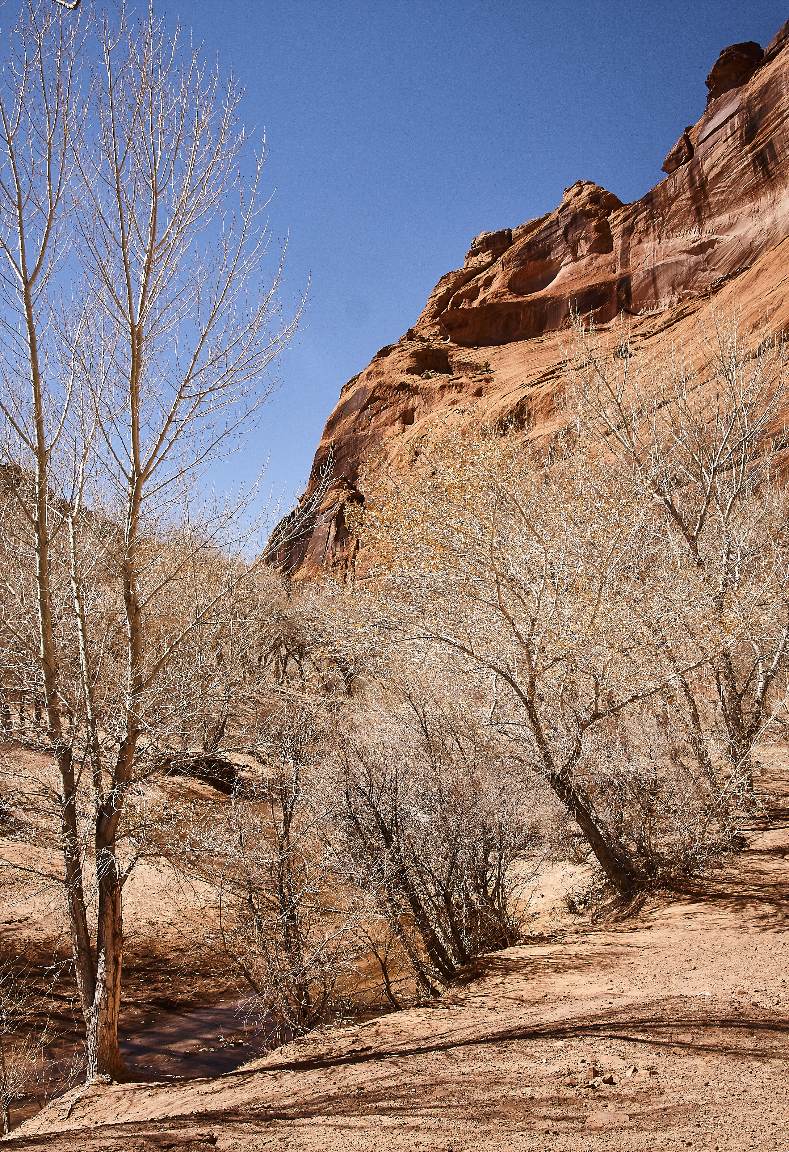 Canyon de Chelly - 28