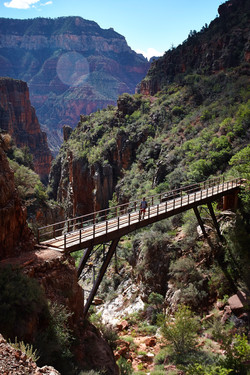 Grand Canyon_224