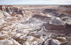 Petrified Forest - 62