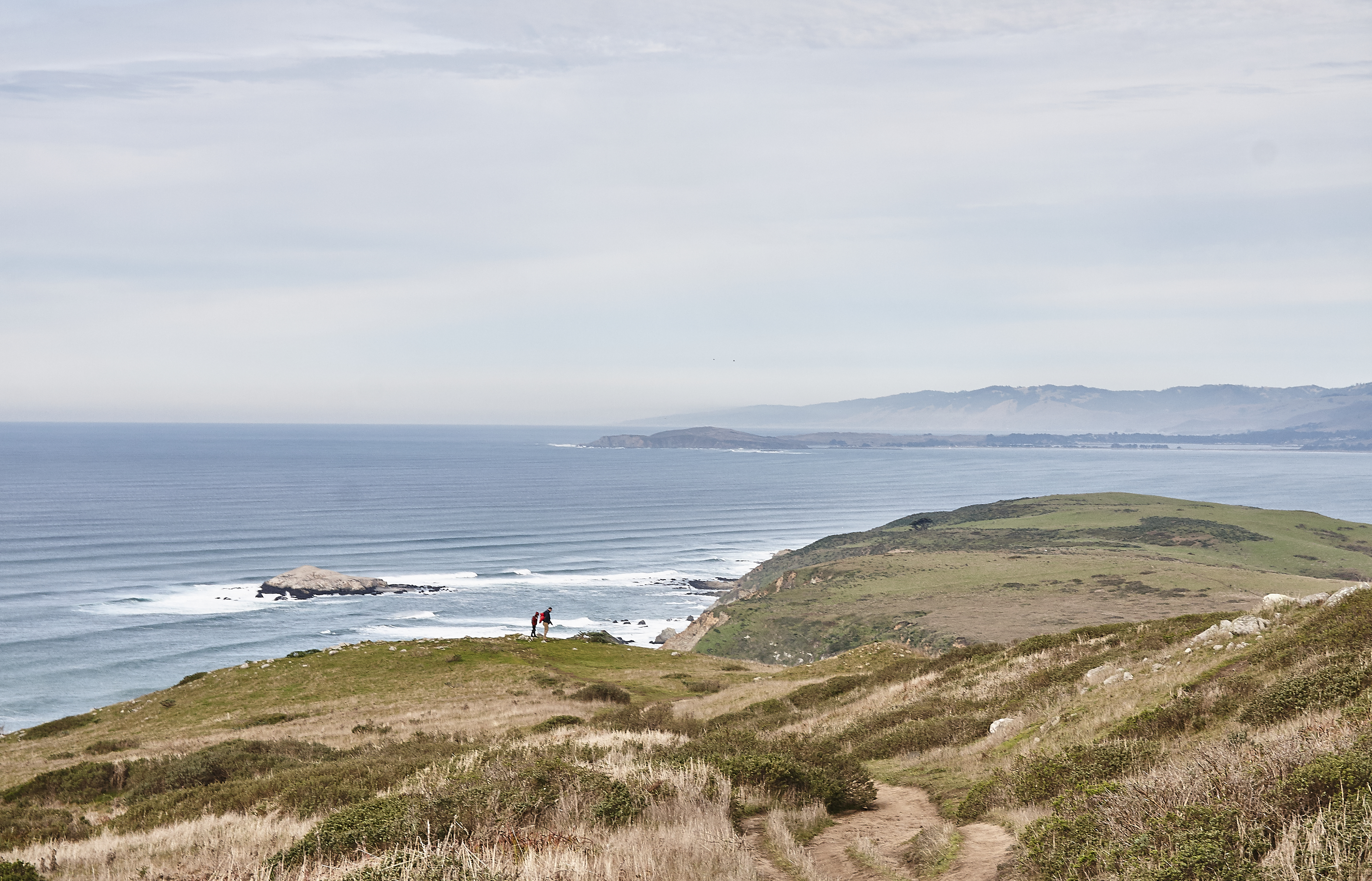 Tomales Point - 002