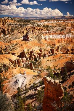 Bryce Canyon_279