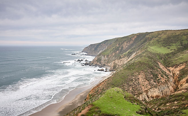 Tomales Point - 017.jpg