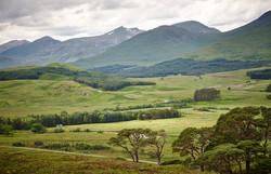 West Highland Way - 056