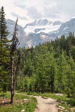 Banff National Park_Valley of the Ten Peaks_174