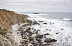 Tomales Point - 011