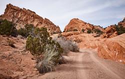 Burr Trail Road - 14