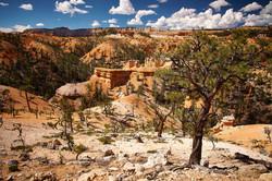 Bryce Canyon_289