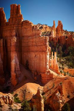 Bryce Canyon_238
