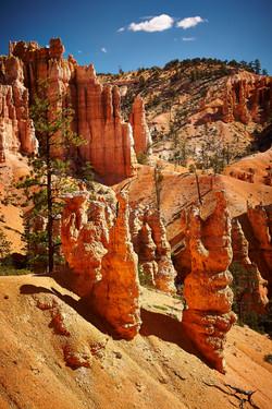 Bryce Canyon_255