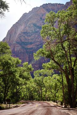 Zion National Park_142
