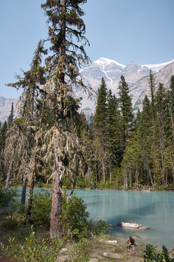 Mount Robson National Park__095