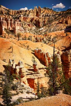 Bryce Canyon_265