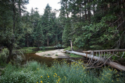 Yosemite 2017 - 57