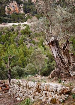Mallorca, Day 2 - 053