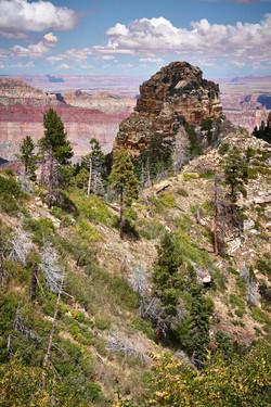 Grand Canyon_148
